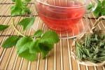 Stevia Rezepte und ihre Verwendung